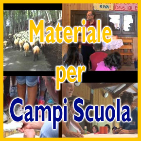 Campi