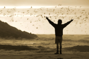 Il vero canto del cuore è la gratitudine - XXVIII Domenica Tempo Ordinario - C