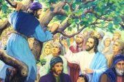 Dio insaziabile cercatore dell'uomo peccatore. XXXI Domenica Tempo Ordinario - C