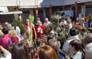 Celebrazione della Domenica delle Palme - 9 aprile 2017