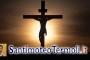 La cattedra, sempre abitata, della croce di Cristo