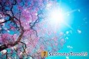 V Domenica del Tempo di Pasqua - Anno C - 24 aprile 2016