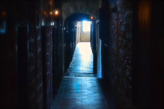 La porta del servizio è la porta stretta. XXI Domenica Tempo Ordinario - C