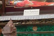 Il legame tra San Timoteo, Termoli e Papa Francesco